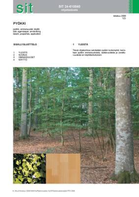 SIT 24-610040, Pyökki